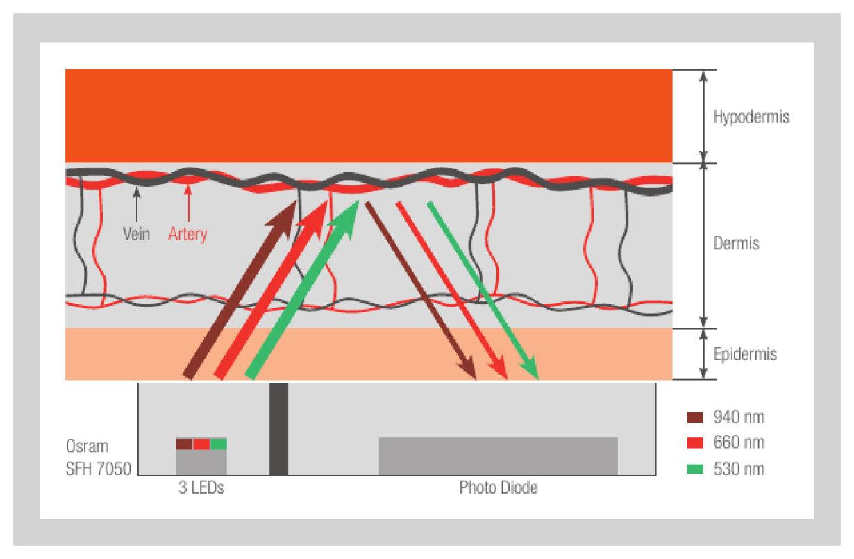 Optical measurement of biometric data