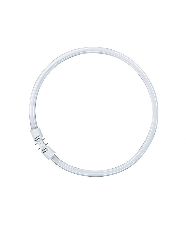 OSRAM L 40W//840 C LumiLux Cool White China 06//2015 x03  RingLampe 40 cm 3cm GLas